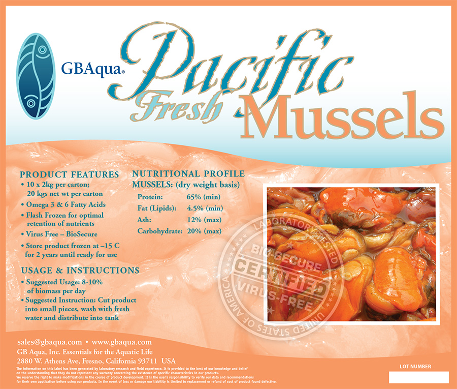 pacific-mussles